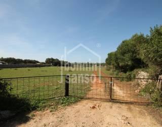 Terreno rústico con más de 8 hectáreas con dos boyeras