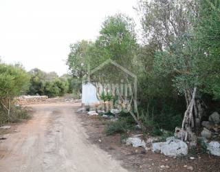 Terreno rústico protegido con más de 7.000 m² ideal huerto