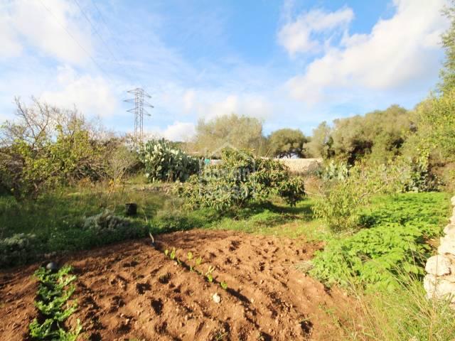 Terreno rústico idóneo para el cultivo, muy cerca de Mahón, Menorca