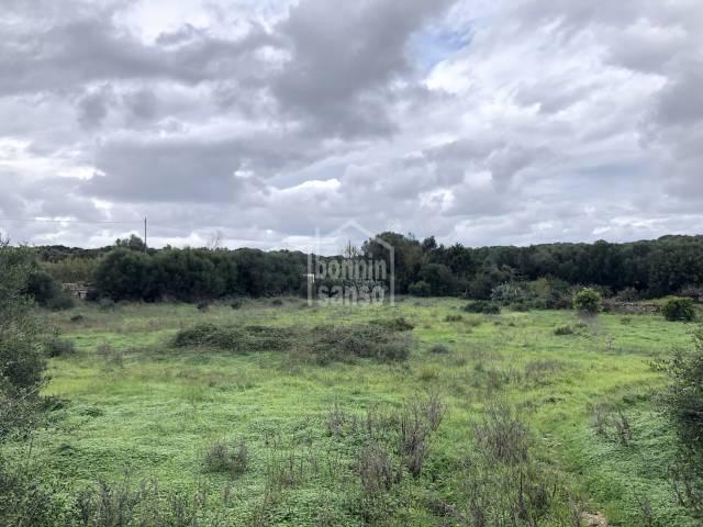 Terreno rustico en la zona de Talati de Baix, Mahón