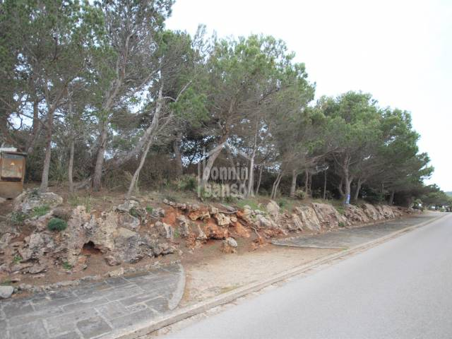 Building plot in Cala Morell of 901m² surrounded by pine trees