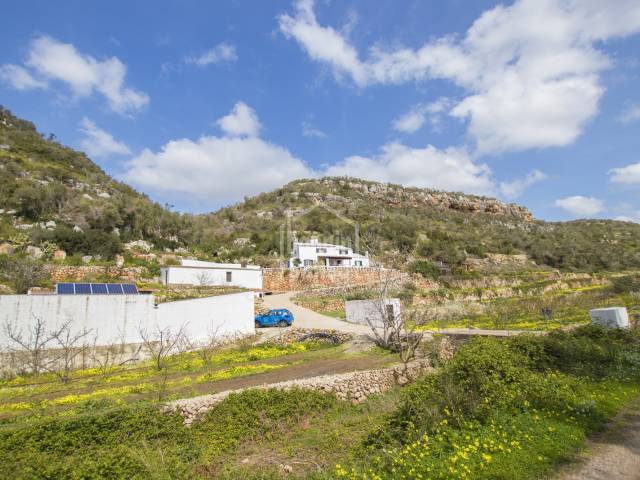 Profitable ECOLOGIC  fruit farm with accommodation. Alayor, Minorca.