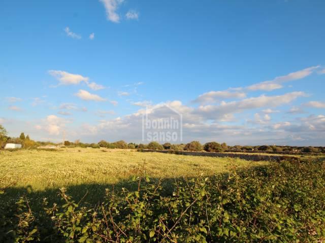 Rustic land in Sant Lluis, Menorca.