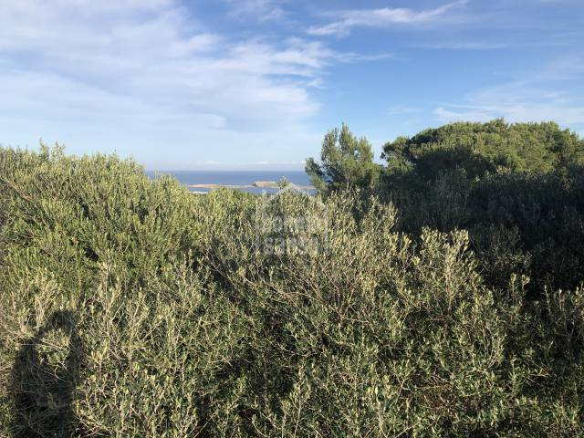 Building plot with panoramic views. Coves Noves Menorca