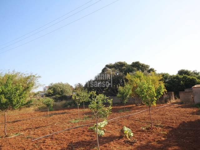 Terreno rústico ideal para huerto con varias edificaciones, Sant Lluís, Menorca