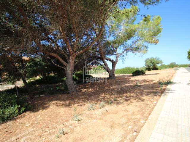 Opportunity to buy a plot in the exclusive urbanization of Son Xoriguer, Ciutadella, Menorca