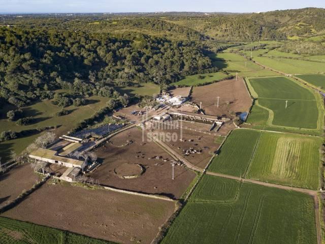 Gran finca en explotación ganadera en Ferrerias, Menorca