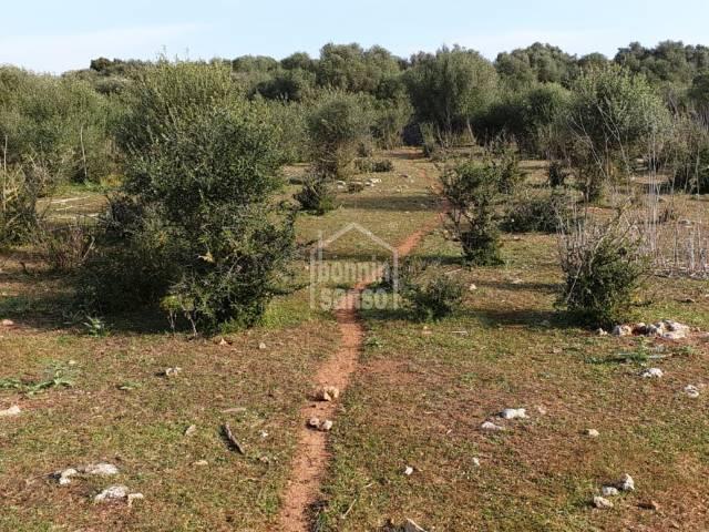Terreno en Llumesanes, Menorca