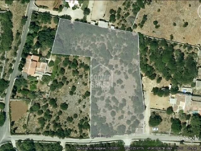 Rustic land in Biniparrell