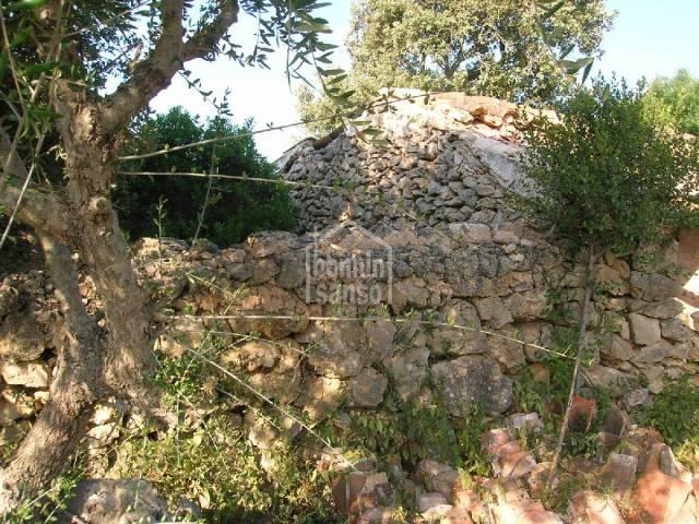 Terreno rústico cerca de Alayor