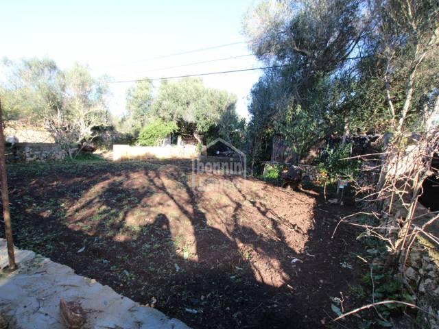 Huerto a las afueras de San Luis, Menorca