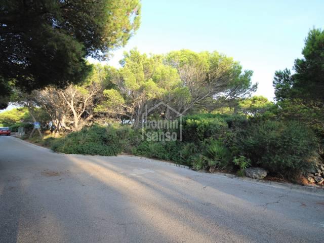 Leafy ground in Cala Morell, Ciutadella, Menorca